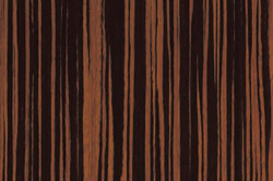 Macasar Ebony - Custom cabinet color & countertops